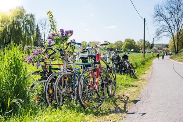 Ta en sykkeltur kanskje?