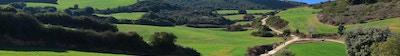 Pilegrimer som går i  solen, Camino de Santiago, Navarra, Spania.