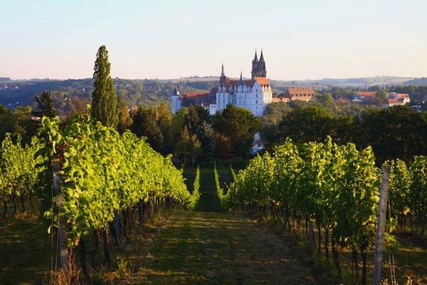 Albrechtsburg  Slott