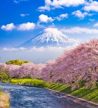 Mt. Fuji, Japan og elven om våren.
