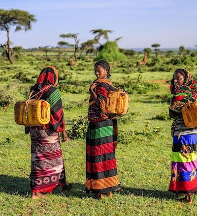 Unge afrikanske kvinner fra Borana-stammen som fører vann til landsbyen, afrikanske kvinner og barn går ofte lange avstander for å bringe tilbake kanner med vann som de bærer på ryggen.
