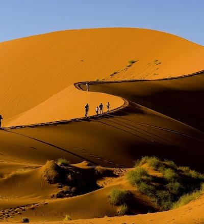 Turister som klatrer Sossusvlei-klitten, Naukluft nasjonalpark, Namibia