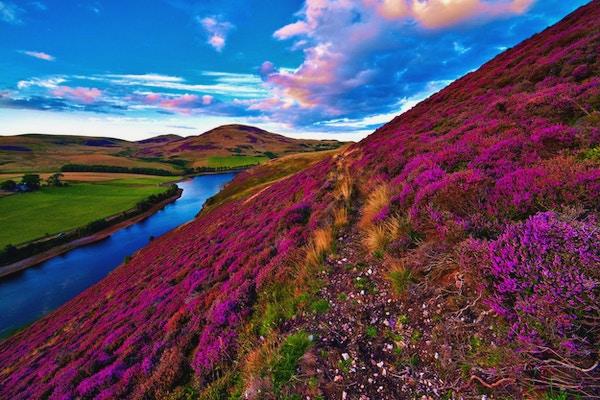 Flott landskap med elv