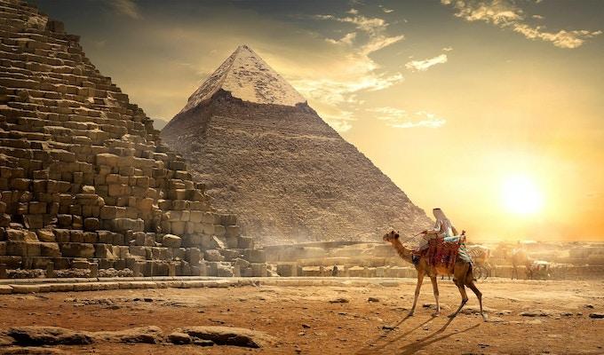 Nomad på kamel nær pyramider i egyptisk ørken