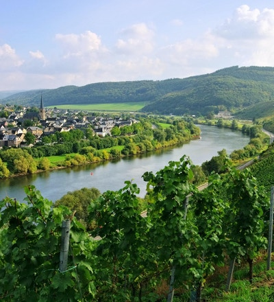 Moselle-elven i Frankrike