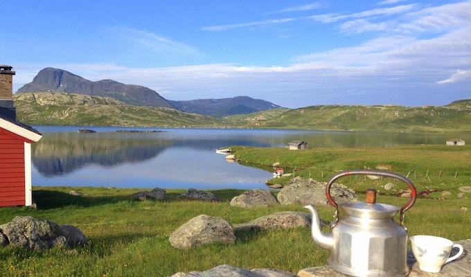 Norge valdres gronolen stol