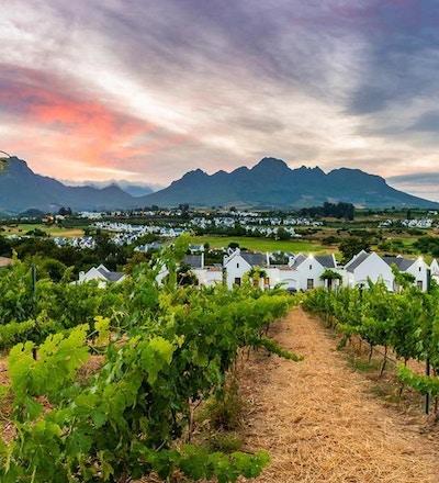 Stellenbosch 01