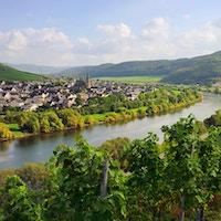 Mosel-elven i Mosel-dalen