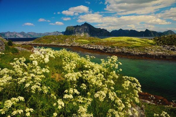 Variert landskap på Senja.
