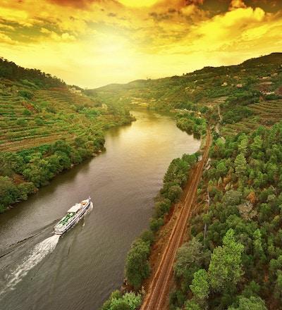 Vingårder i Dourodalen, Portugal