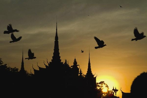 Solnedgangsutsikt over det kongelige palasset i Phnom Penh i Kambodsja med flygende fugler.
