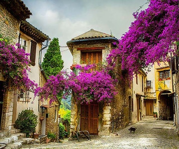 Provence annonse