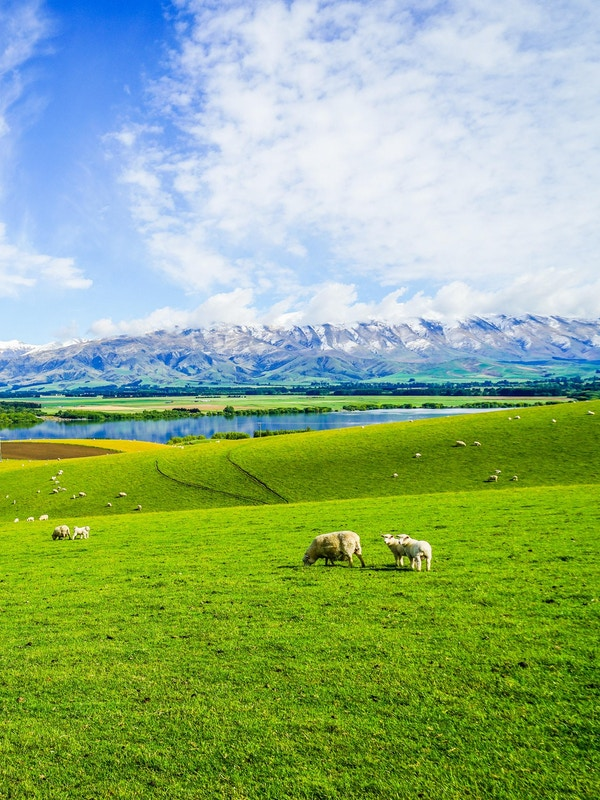 Det vakre naturskjønne landskapet ved Lake Opuha & Dam nær Fairlie med bakgrunn fra snødekte fjell på en solrik dag, South Island, New Zealand