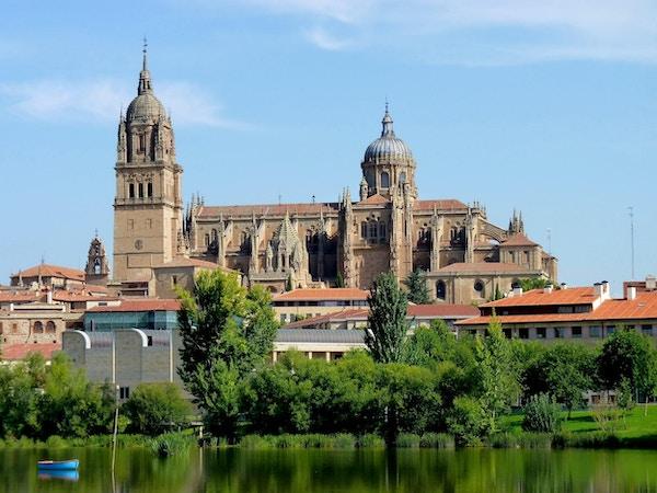 Utsikt over katedralen i Salamanca.