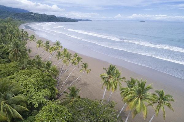 Luftfoto fra den berømte bortgjemte Uvita-stranden, Marino Ballena nasjonalpark, Costa Rica