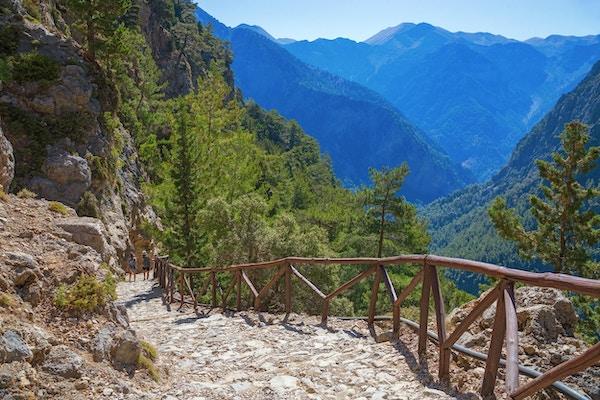 Samaria nasjonalpark. Storslått utsikt over toppen av fjellet. Skogsti.