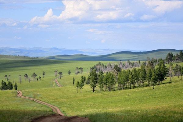 Steppelandskap med fjell i bakgrunnen i Mongolia.