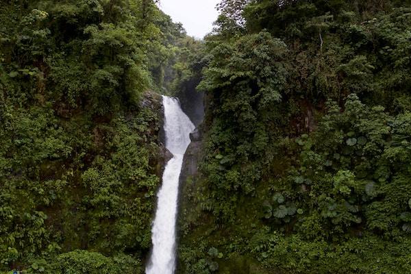 Frodig natur og fossefall i Costa Rica