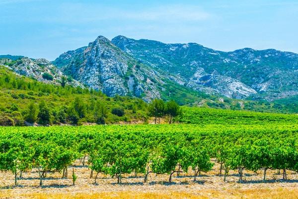 Landskapsbilde med Alpillene i Frankrike.