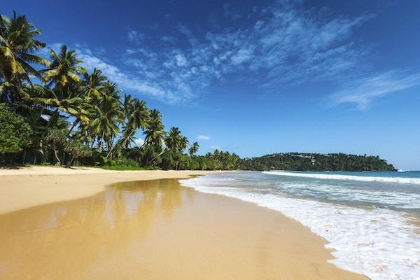 Tropisk ferieferiebakgrunn - paradis idyllisk strand. Sri Lanka