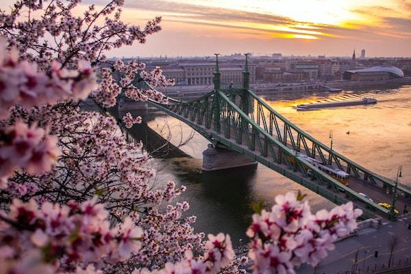 Vårfølelse i Budapest om morgenen i mars