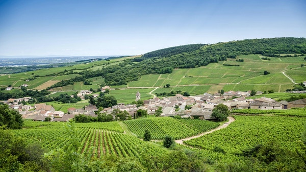 Den gamle landsbyen Solutre-Pouilly med vingårder, Burgund, Frankrike