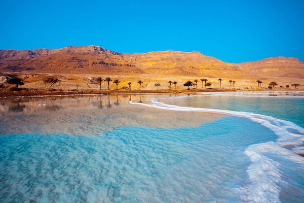 Dødehavsstrand med palmer og fjell på bakgrunn