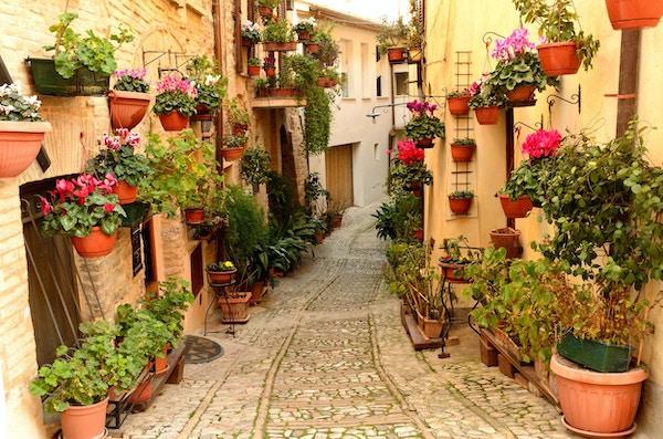 Bilde av blomsterhall i landsbyen Spello.