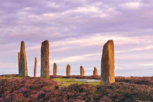 De eldgamle stående steinene fra Ring of Brodgar på Orknøyene utenfor nordkysten av Skottland, tidlig om morgenen bare ved soloppgang. Det antas at dette monumentet i hjertet av det neolitiske Orkney verdensarvstedet ble bygget mellom 4000 og 4500 år siden. Opprinnelig bygget med seksti steiner i en sirkel over 100 meter (over 100 meter) på tvers, fremdeles er det mindre enn halvparten av steinene. Den høyeste av steinene er litt over 4,5 meter høye.