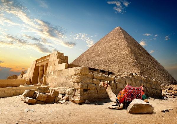 Kamel hviler nær ruinene av inngangen til pyramiden