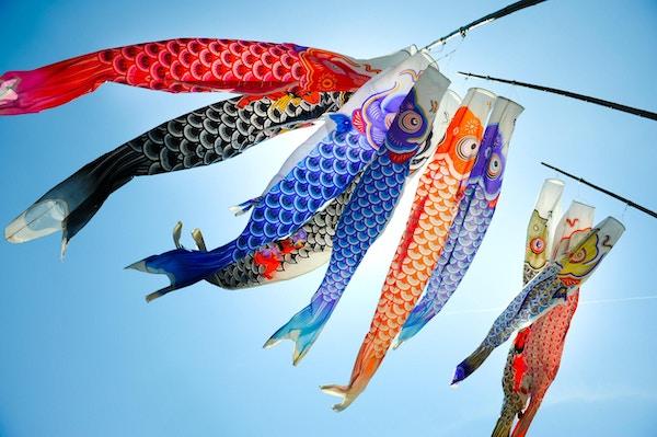 Tradisjonell koi-formet japansk kite kalt koinobori på en blå himmel i Hiroshima