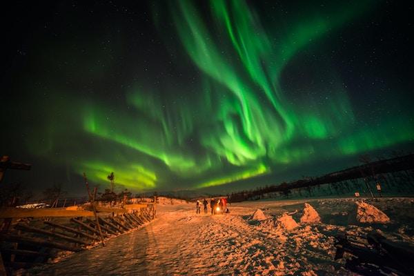 Nordlys over vinterlandskap.