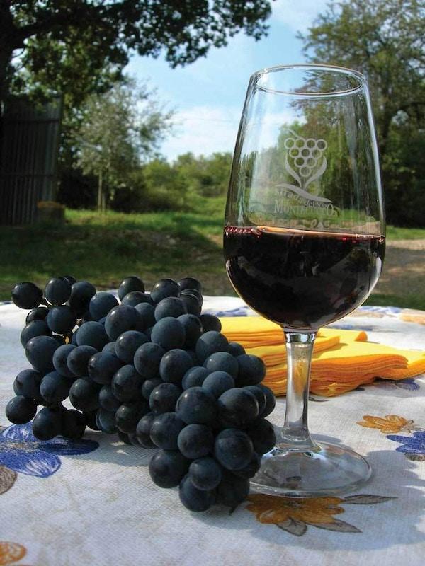 Glass med vin med druer på et bord, Italia.