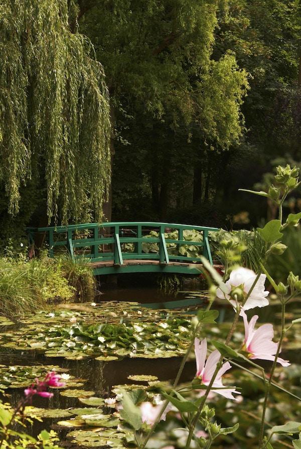 Hagen til den berømte maleren Claude Monet, hvor han malte vannliljene sine