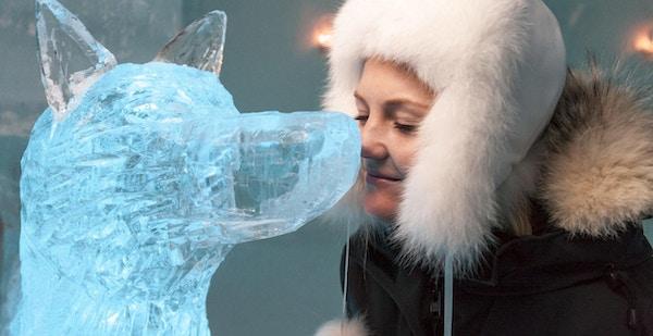 Jente med pelslue setter nesen sin mot nesen på en isskulptur av en hund