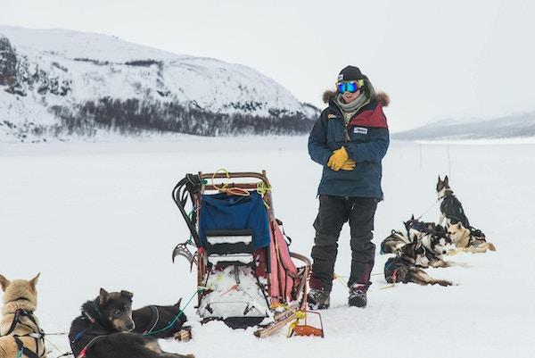 Hundesledekøring i Troms