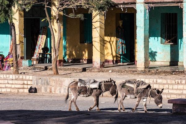 Esler i Aksum, Etiopias første hovedstad