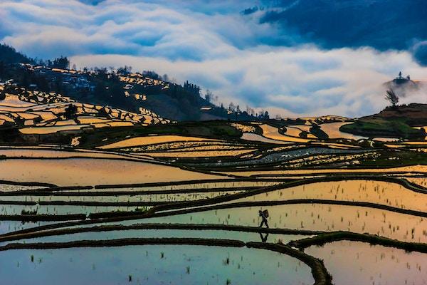 Utsikt over vakre risterrasser i Jianshui, Kina.
