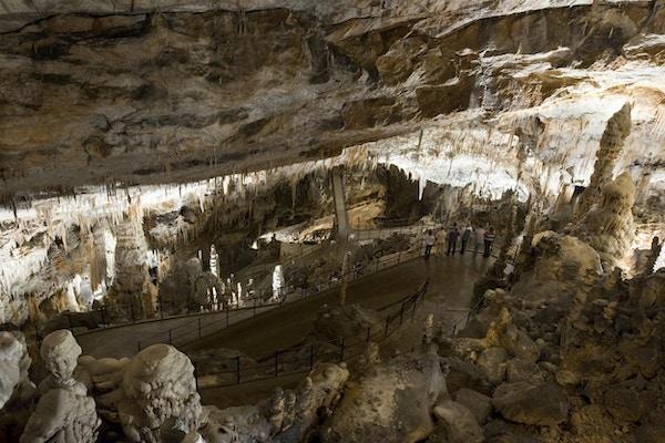 Dryppsteinsgrottene i Postojna med sine fantastiske klippeformasjoner.