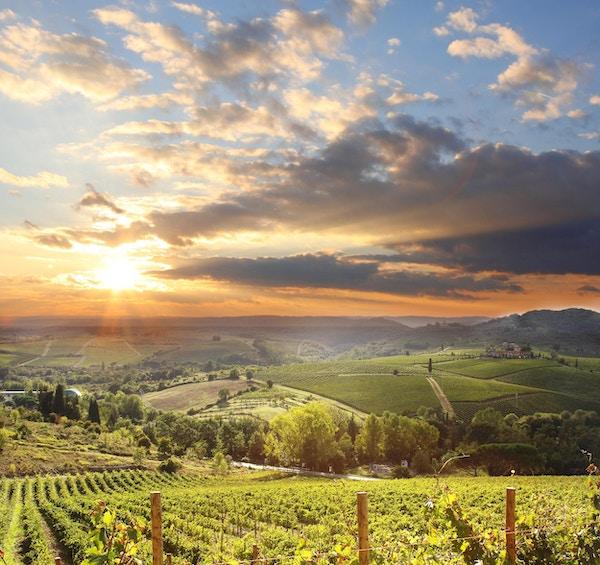 Utsikt over vinområdet Chianti, det mest omfangsrike vindistriktet i Toscana