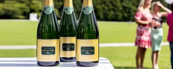 Et utvalg av musserende vin fra Exton Park, England.