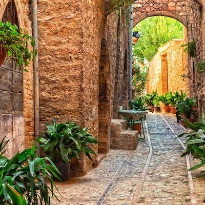 Planter i potter på en smal gate i den gamle byen Spello, Umbria, Italia