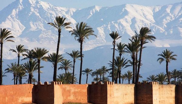 Voller i Marrakesh med Atlasfjellene i bakgrunnen.