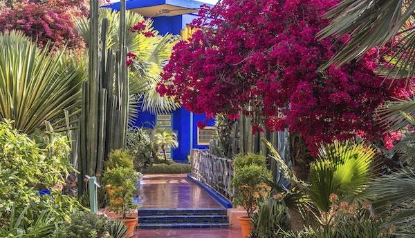 Nydelige hage i Marrakech.