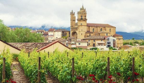 Vindistriktet Rioja med vinranker og by i bakgrunnen.