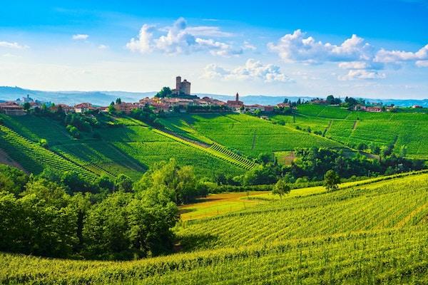 Langhe vingårder solnedgangspanorama, Serralunga d Alba, Unesco Site, Piemonte, Nord-Italia Europa.