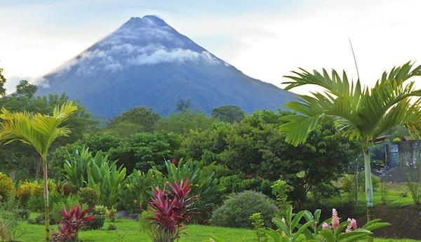 En frodig hage i La Fortuna, Costa Rica med Arenal Volcano i bakgrunnen.