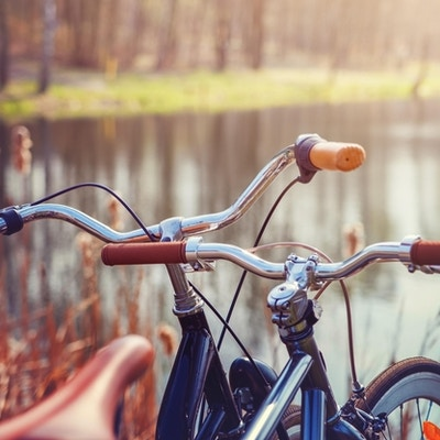 To sykler som står på bredden av skogsjøen.