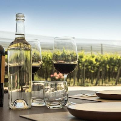 Vinsmaking utendørs blant vingårder