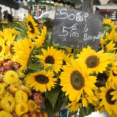 Solsikker til salg på det lokala markede